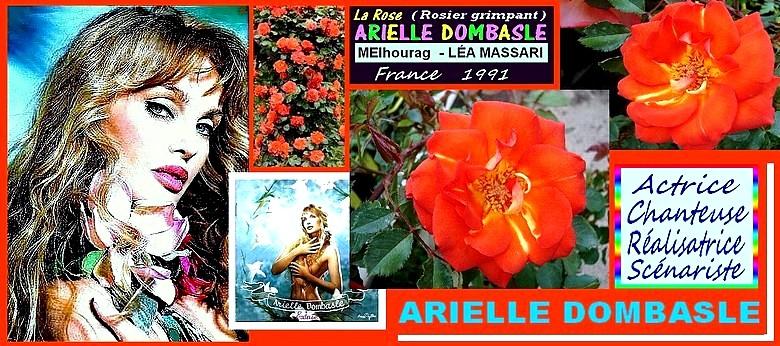 arielle-dombasle-rose-...