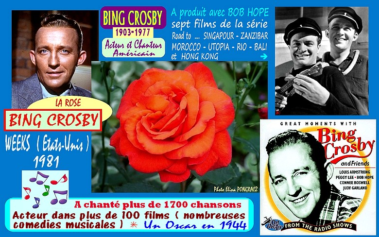 bing-crosby-rose-celebrites-roses-passion-4176.jpg