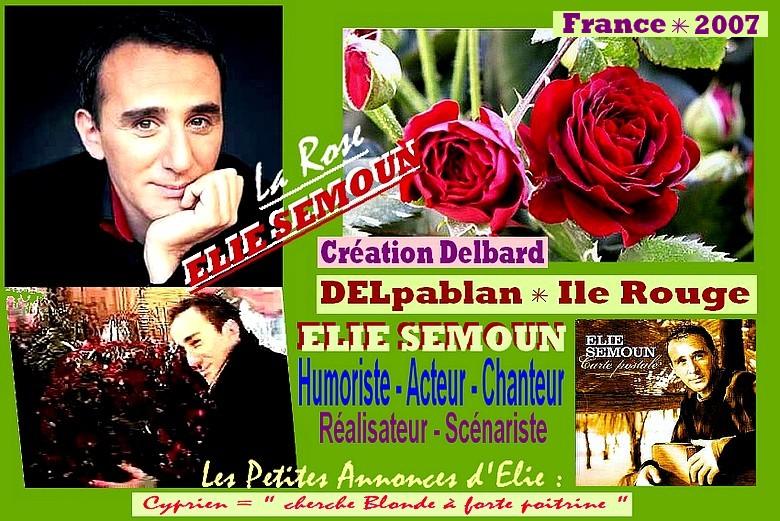 elie-semoun-rose-delbaplan-roses-passion-ile-rouge-rose-delbard.jpg