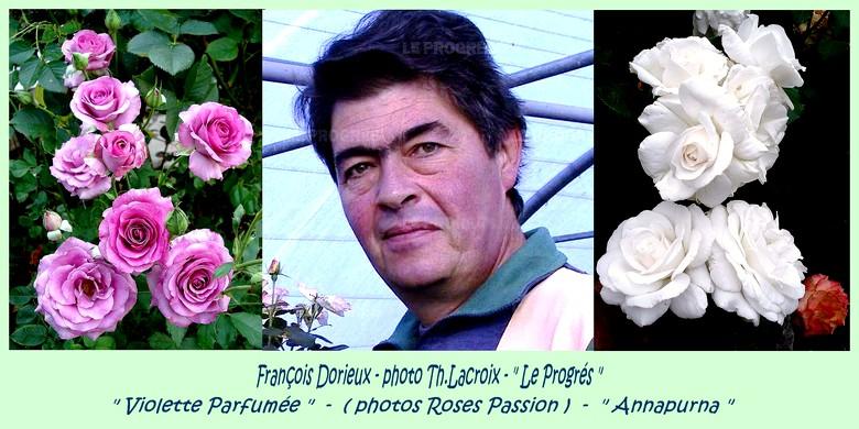Francois dorieux violette parfumee annapurna roses passion