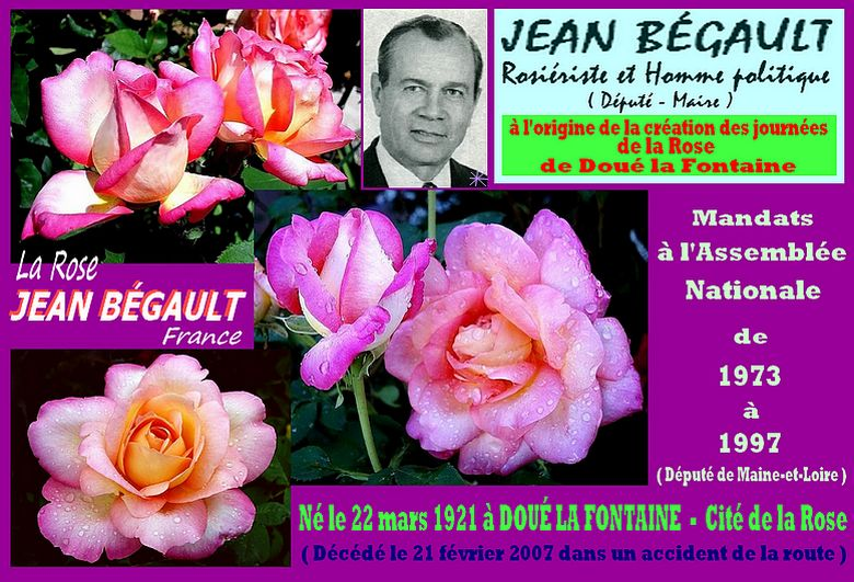 jean-begault-rose-celebrites-roses-passion.jpg