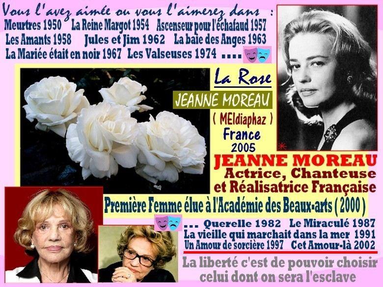 jeanne-moreau-rose-celebrites-roses-passion.jpg