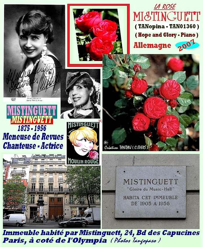 mistinguett-rose-celebrites-hope-and-glory-piano-roses-passion.jpg