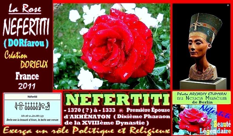 nefertiti-rose-dorieux-celebrites.jpg