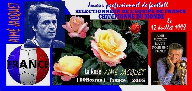 rose-aime-jacquet-doroxran-celebrite-roses-passion-r.jpg