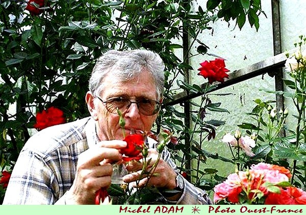 rose-anne-vanderlove-michel-adam-createur-de-la-rose-photo-ouest-france.jpg