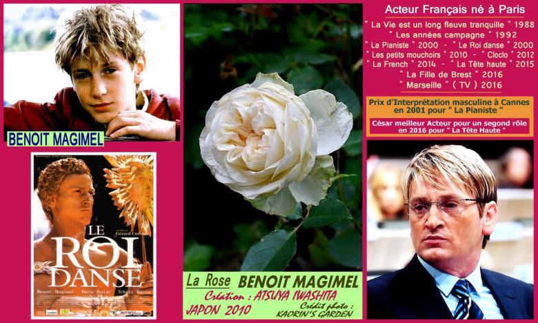 Rose benoit magimel atsuya iwashita japon 2010 kaorin s garden roses passion