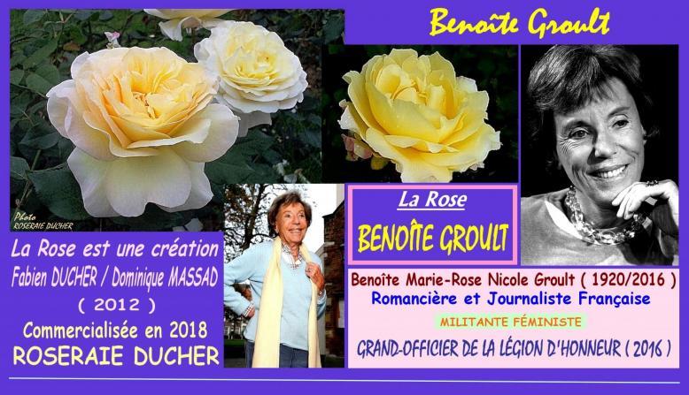 Rose benoite groult obtenteurs ducher et massad 2012 france roses passion