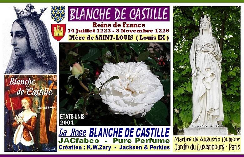 rose-blanche-de-castille-jacfabco-pure-perfume-zary-celebrites-roses-passion.jpg