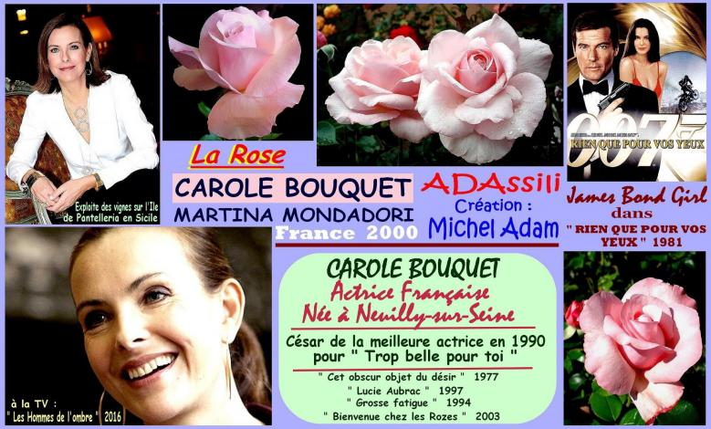 Rose carole bouquet adassili martina mondadori michel adam france 2000 roses passion