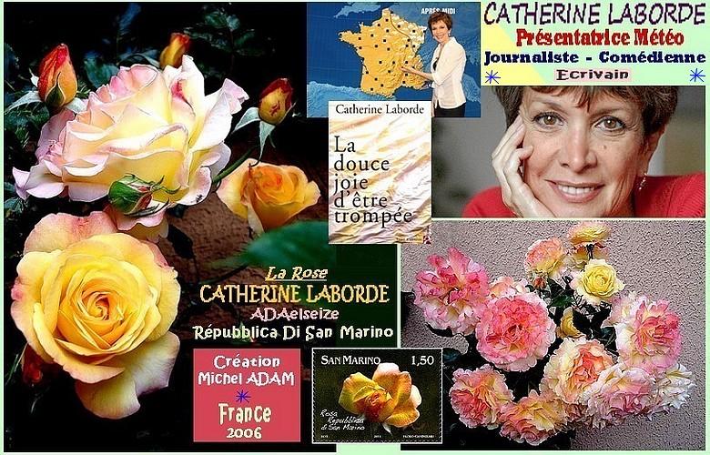 rose-catherine-laborde-adaelseize-repubblica-di-san-marino-michel-adam-roses-passion.jpg