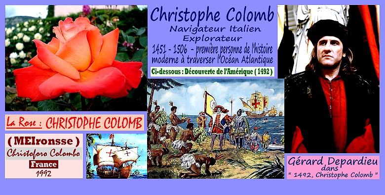 rose-christophe-colomb-christoforo-colombo-celebrites-roses-passion-rose-orange.jpg