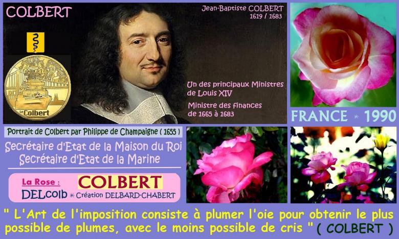 Rose colbert delcolb delbard chabert france 1990 roses passion