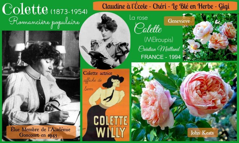 Rose colette meiroupis john keats genevieve meilland roses passion 2j