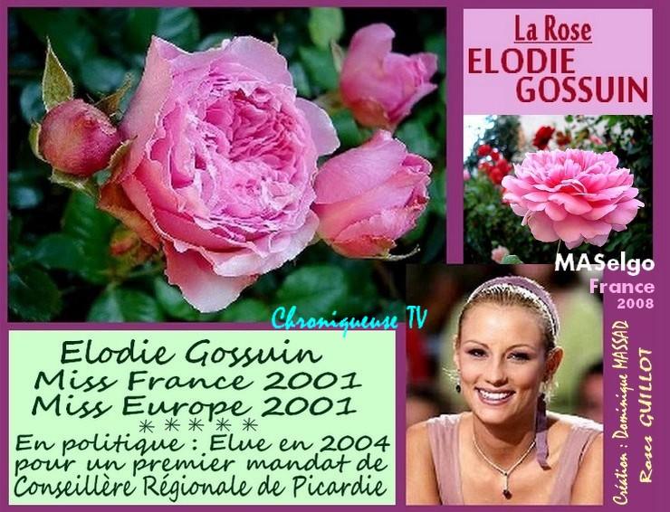 rose-elodie-gossuin-celebrites-maselgo-dominique-massad-roses-passion.jpg