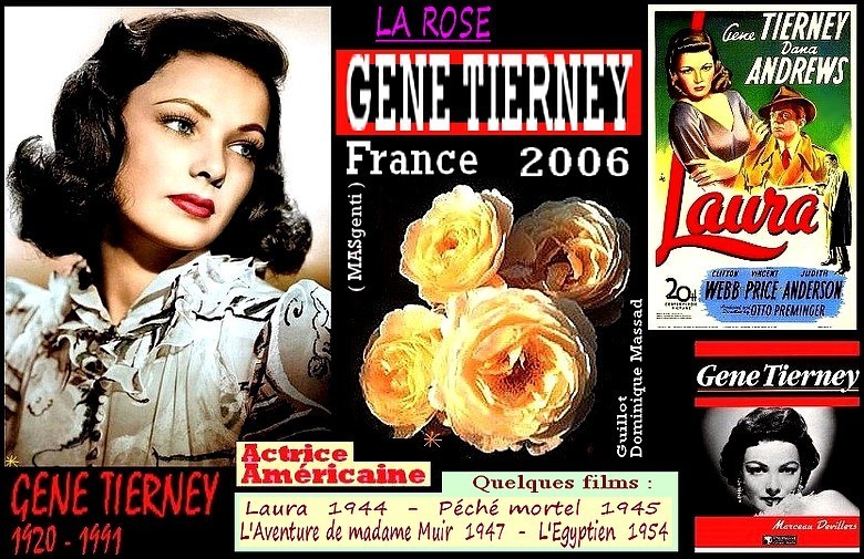 rose-gene-tierney-masgenti-celebrites-dominique-massad-roses-passion.jpg