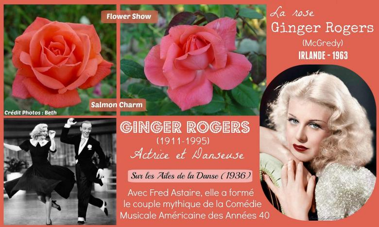 Rose ginger rogers salmon charm flower show mcgredy irlande roses passion 2j
