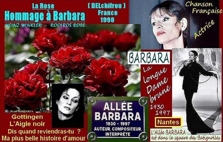 rose-hommage-a-barbara-delchifrou-heinz-winkler-rooibos-rose-celebrites-roses-passion.jpg