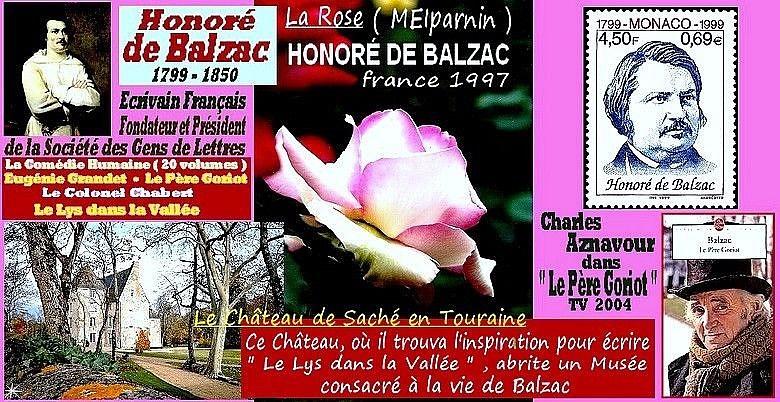 rose-honore-de-balzac-meiparnin-celebrites-roses-passion.jpg