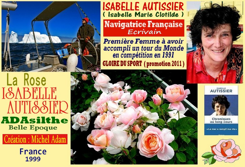 Rose isabelle autissier adasilthe belle epoque michel adam france 1999