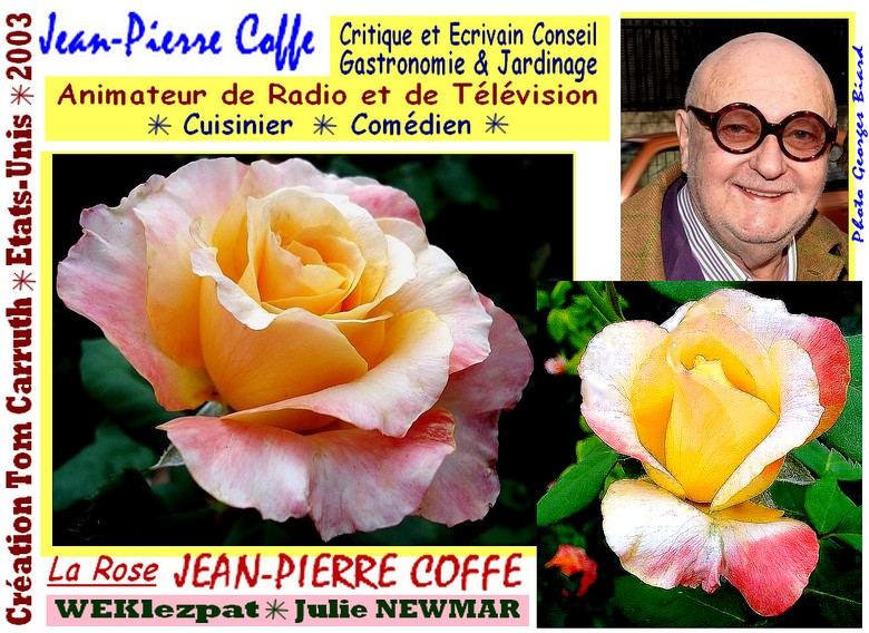 rose-jean-pierre-coffe-celebrites-roses-passion-weklezpat-julie-newmar.jpg