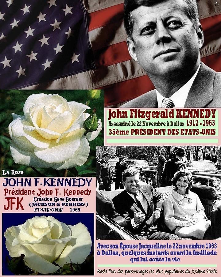 rose-john-f-kennedy-jfk-president-john-f-kennedy-celebrites-boerner-1965-roses-passion-rr.jpg