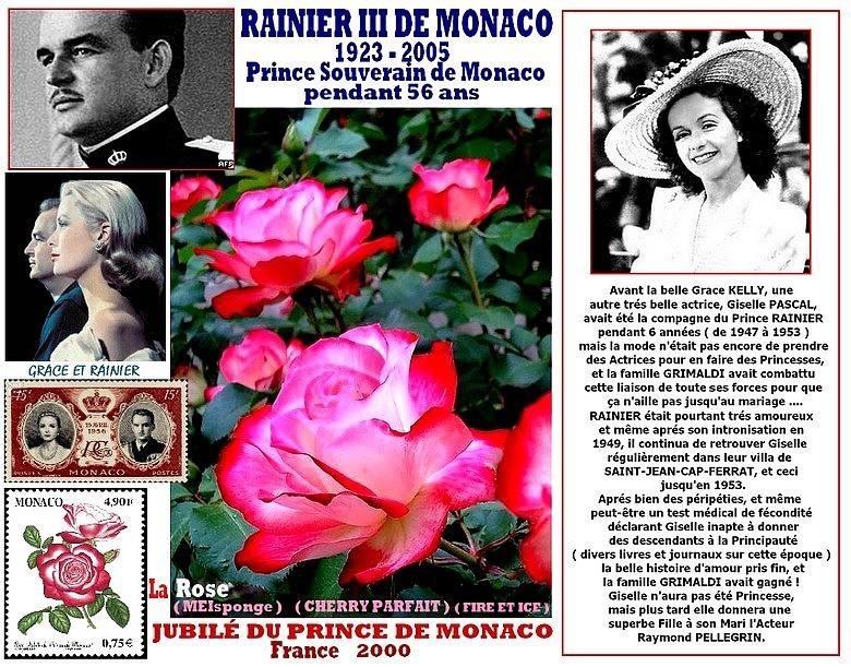 rose-jubile-du-prince-de-monaco-meisponge-giselle-pascal-celebrites-cherry-parfait-fire-et-ice.jpg