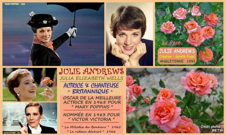 Rose julie andrews garet fryer royaume uni 1992 roses passion