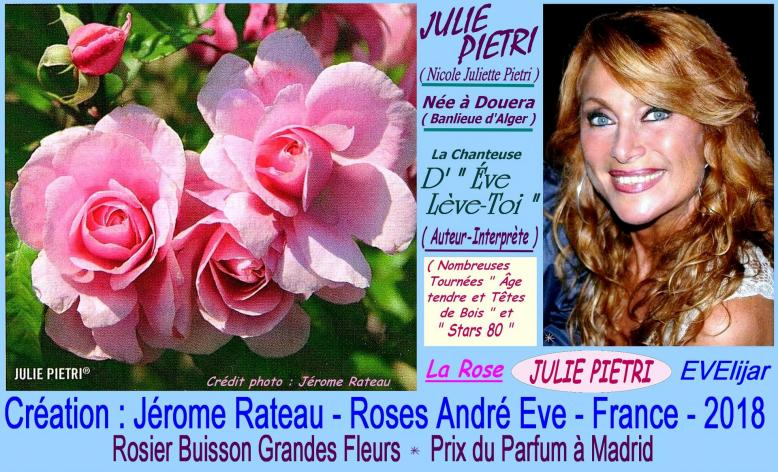Rose julie pietri evelijar jerome rateau roses andre eve france 2018 roses passion