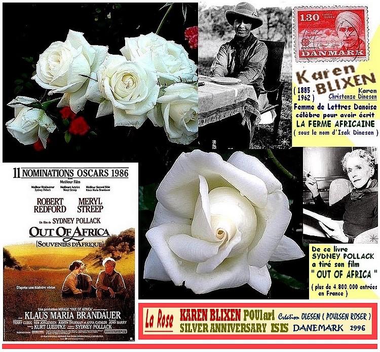 rose-karen-blixen-poulari-silver-anniversary-isis-poulsen-roser-roses-passion.jpg