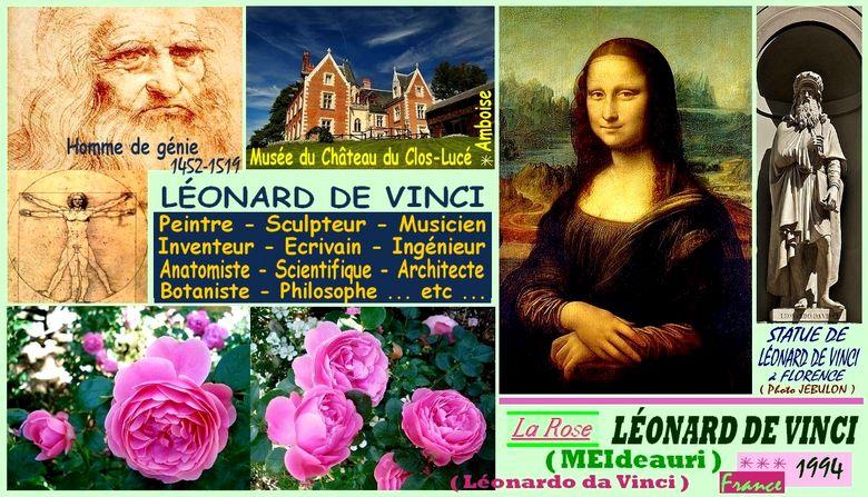 rose-leonard-de-vinci-celebrites-roses-passion-3818.jpg