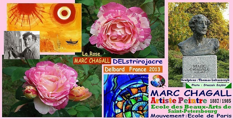 Rose marc chagall delstrirojacre delbard france 2013