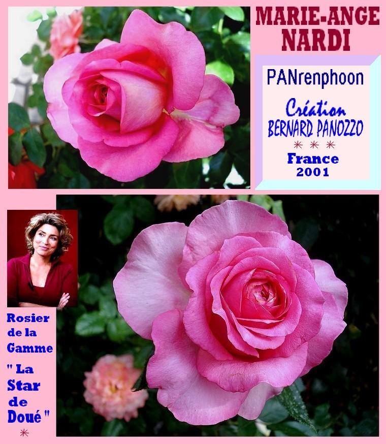 rose-marie-ange-nardi-panrenphoon-celebrites-bernard-panozzo-la-star-de-doue.jpg