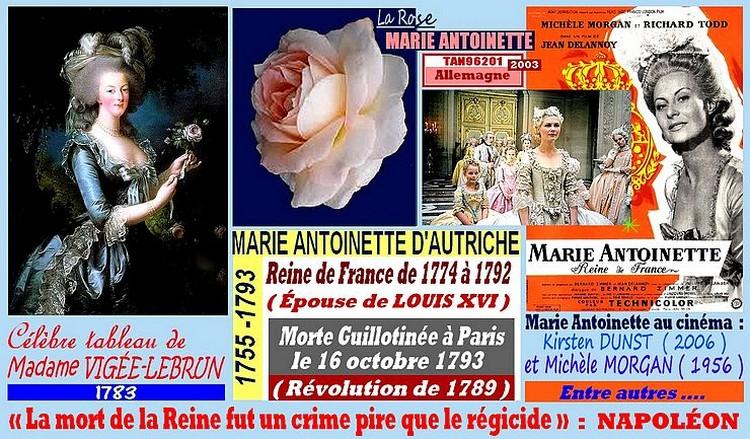 rose-marie-antoinette-celebrites-tableau-vigee-lebrun-roses-passion.jpg