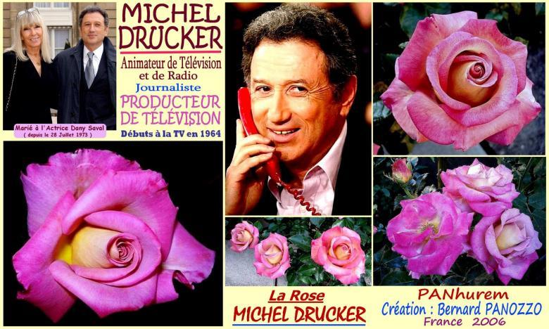 Rose michel drucker panhurem dany saval bernard panozzo roses passion