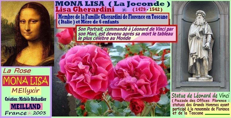 Rose mona lisa meilyxir michele richardier meilland france 2003
