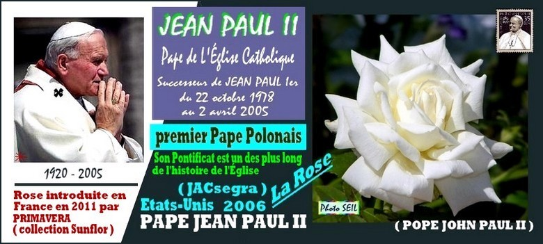 rose-pape-jean-paul-2-jacsegra-pope-john-paul-2-celebrites-papa-giovanni-paolo-2-r.jpg