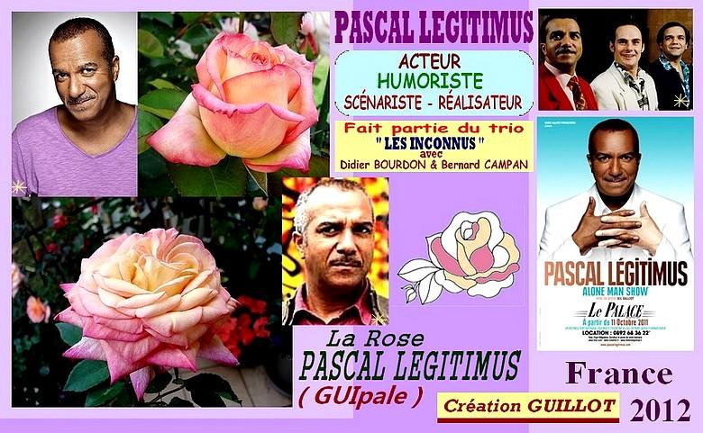 Rose pascal legitimus guipale creation guillot france 2012 5744