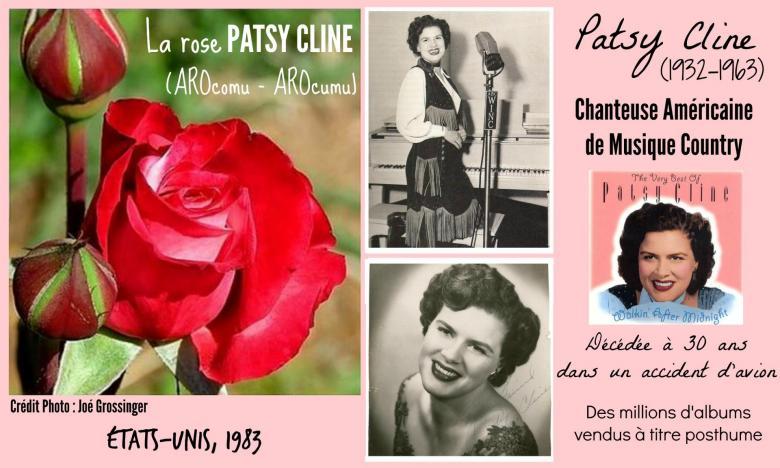 Rose patsy cline arocomu arocumu jack e christensen etats unis 1983 roses passion 2j