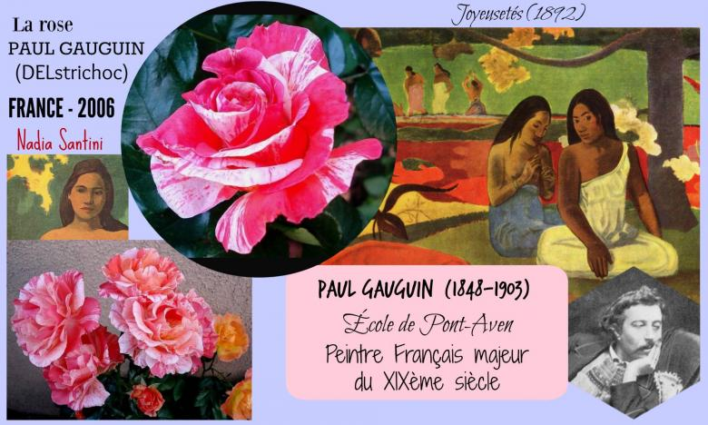 Rose paul gauguin delstrichoc nadia santini delbard france 2006 roses passion 2j