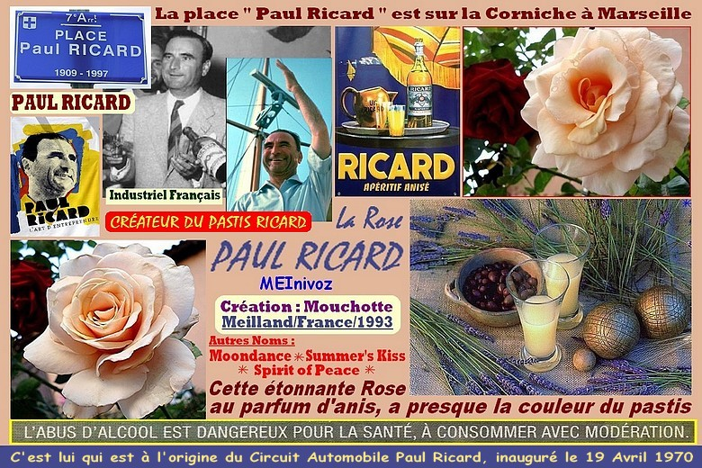 Rose paul ricard meinivoz moondance spirit of peace summer s kiss mouchotte meilland rosespassion