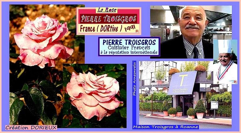 rose-pierre-troisgros-celebrites-roses-passion-6574.jpg