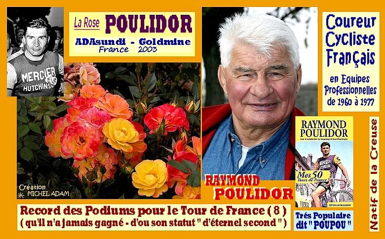 rose-poulidor-adasundi-goldmine-creation-michel-adam-8888.jpg