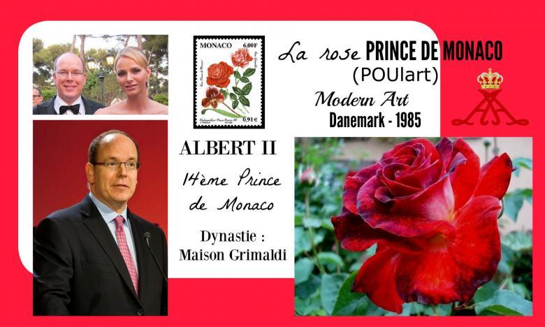 Rose prince de monaco poulart modern art poulsen danemark 1985 roses passion 2j
