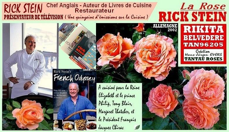 rose-rick-stein-rikita-belvedere-tan96205-celebrites-roses-passion.jpg