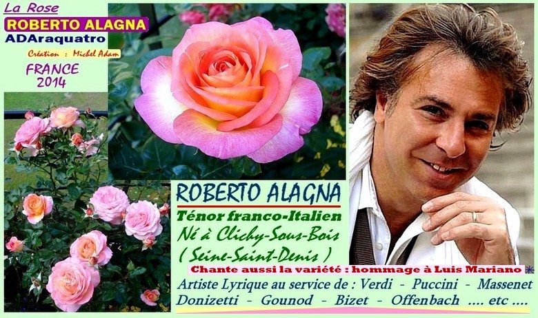 Rose roberto alagna adaraquatro michel adam france 2014 rosespassion 1