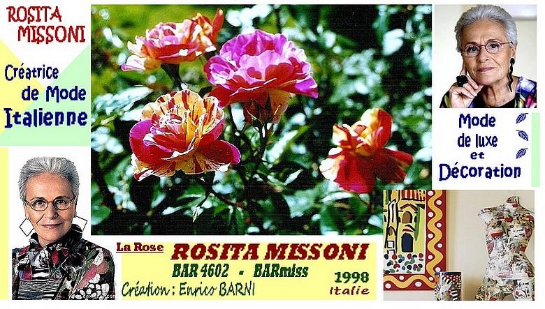 rose-rosita-missoni-bar-4602-barmiss-enrico-barni-roses-passion.jpg