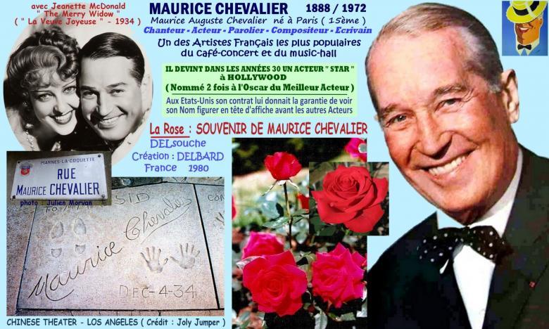 Rose souvenir de maurice chevalier delsouche delbard france 1980 roses passion