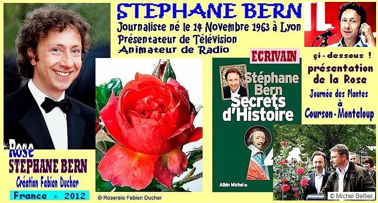 Rose stephane bern creation fabien ducher france 2012 2