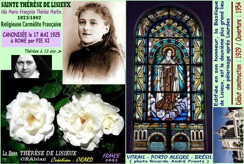 Rose therese de lisieux orablan orard france 1991 rosespassion